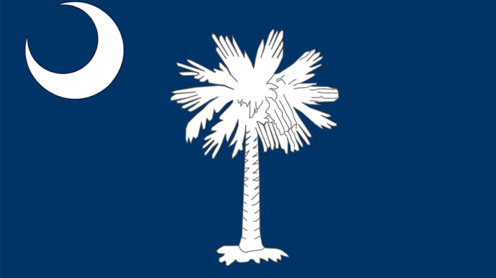 Image result for sc flag