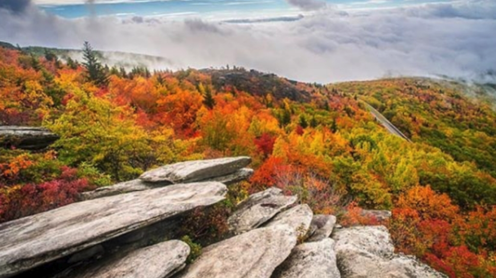 take a trip to asheville n c to view the fall foliage chstoday