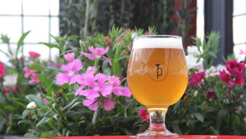 beer-from-revelry-brewing-co