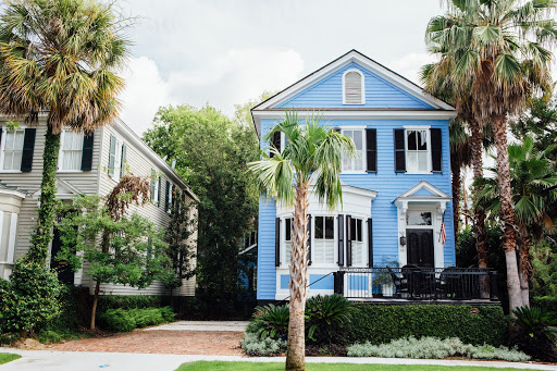 blue house and palmetto tree