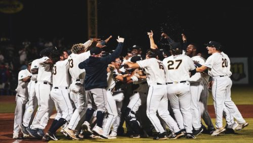 RiverDogs win their first-ever title